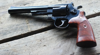 Side view S&W model 29 .44 magnum