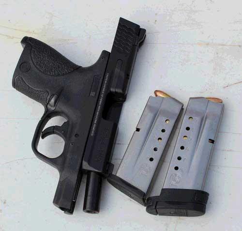 S&W Military and Police Shield 9mm with the 7 and 8 round magazines.