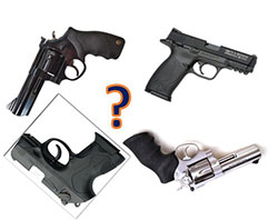 Which gun to choose picture